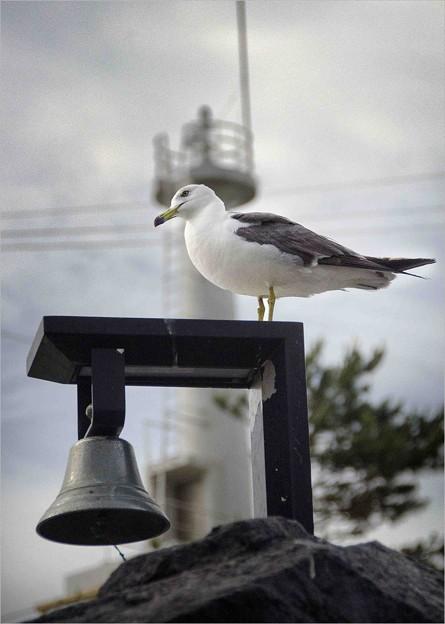 写真: 鐘を守る