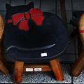 写真: 猫の椅子