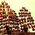 写真: 木の実の竿燈