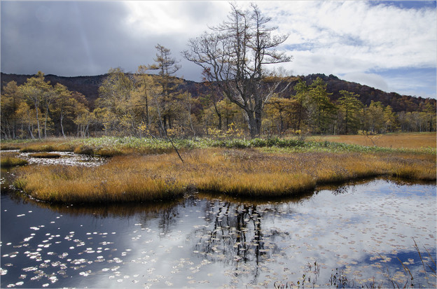 晴れ行く湿原