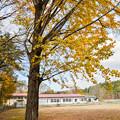 写真: 廃校となった分校の秋