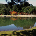 写真: 浄土の渚