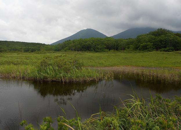 湿原から見る山は優しい