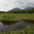 Photos: 湿原から見る山は優しい