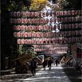 Photos: お宮参り