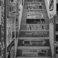 Photos: 誘惑の階段