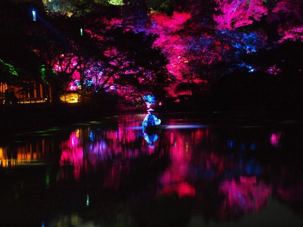 写真: 2018年御船山チームラボ幽玄の世界