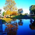 公園初秋の風情