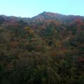 紅葉の山を見ながら