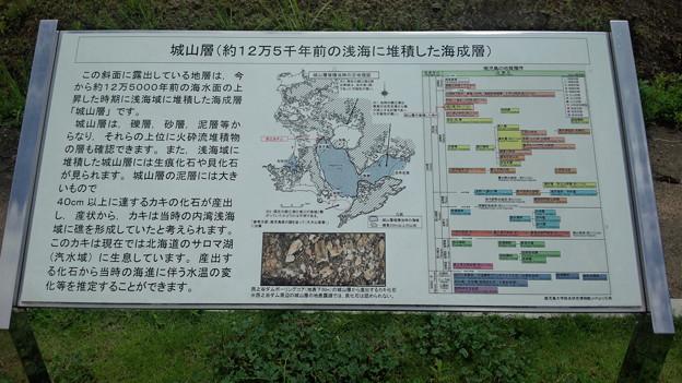 城山層の解説 西之谷ダムにて 鹿児島