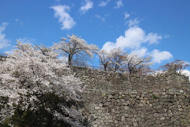 写真: 小峰城石垣