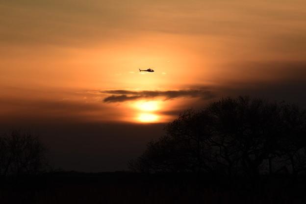 夕日のヘリ