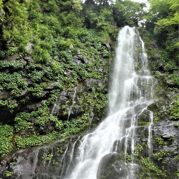 膜滝の景観!