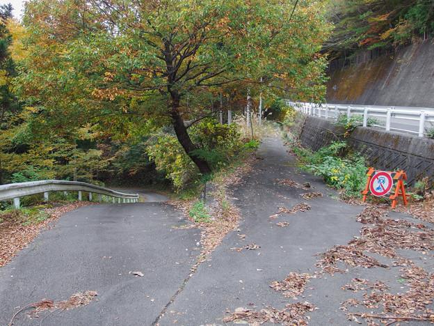 奥大井湖上駅駐車場へ下る道