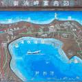 Photos: 御浜岬案内図