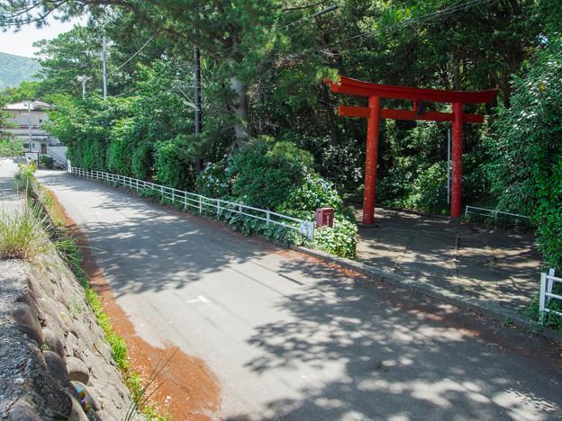 諸口神社の鳥居