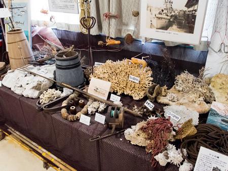 戸田造船郷土資料博物館のサンゴ