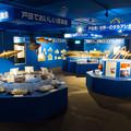 写真: 駿河湾深海生物館