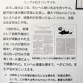 写真: オロシザメの説明板