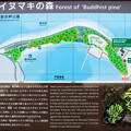 御浜岬公園 案内図