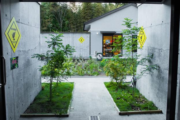 KawaZooの中庭