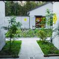 Photos: KawaZooの中庭