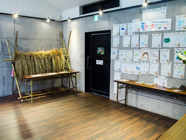 KawaZoo Gallery・Laboratory