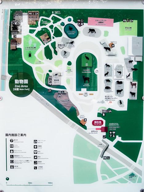 井の頭自然文化園 動物園ご案内
