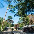 Photos: 井の頭自然文化園 動物園