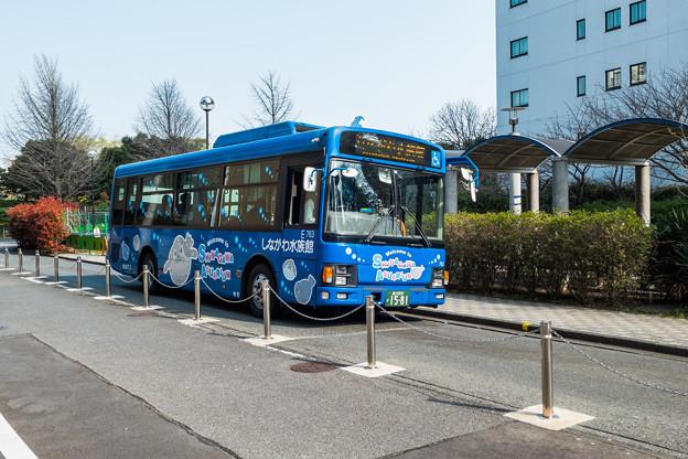 Photos: しながわ水族館のラッピングバス