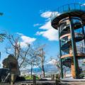 Photos: 富士と港の見える公園 新展望台