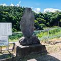 巌谷小波句碑と猿棚の滝