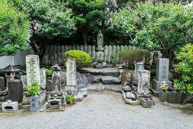 松蔭寺の石仏