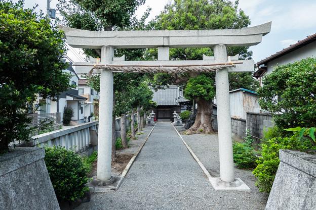 高木神社 参道