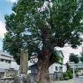 高木神社 大塚耕地整理記念碑