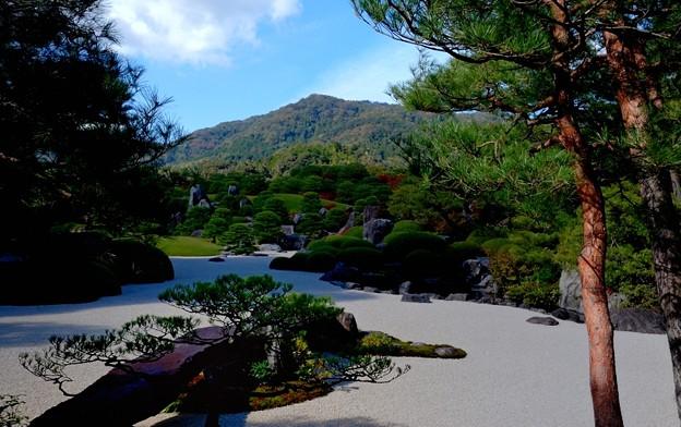 Photos: 足立美術館 庭園風景
