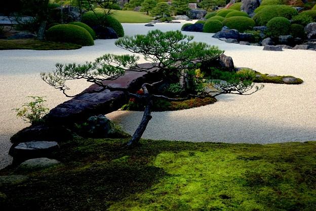 足立美術館 庭園風景