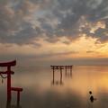大魚神社の海中鳥居の朝 3