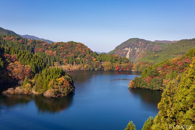 蜂の巣湖(下筌ダム湖) 紅葉