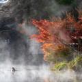 湯布院 金鱗湖 紅葉 2