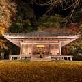 富貴寺 ライトアップ 2