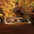 富貴寺 ライトアップ 3