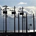 Photos: 北の電信柱