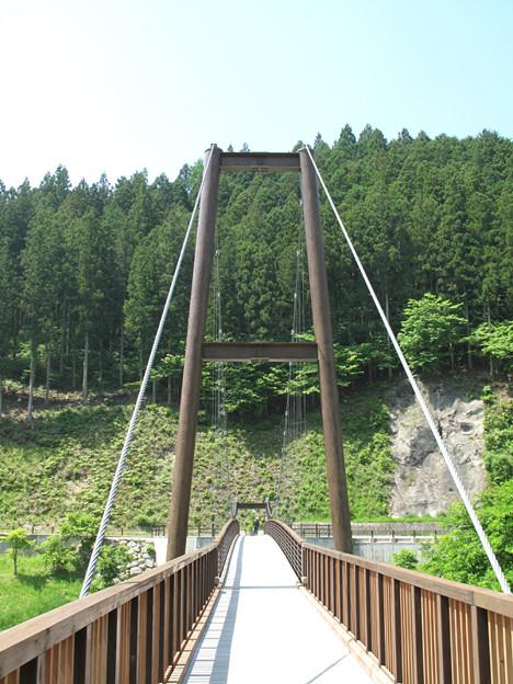 IMG_8021 吊橋
