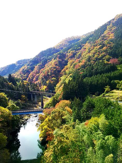 写真: P_20151101_120844 小坂の風景