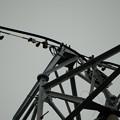 近所の鉄塔 30