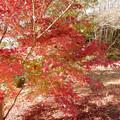 Photos: DSCN0111 三河湖4