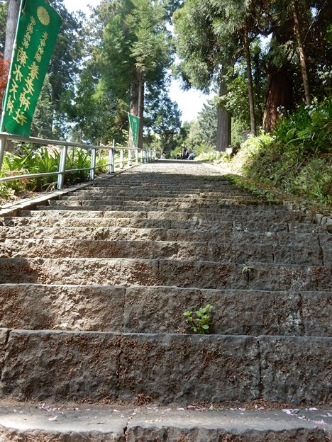 写真: 6養老神社