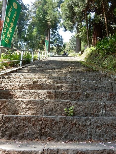 6養老神社