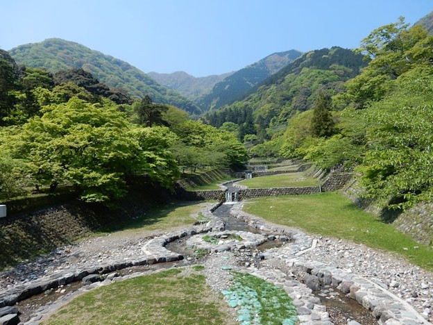 写真: 1水と新緑の養老山系